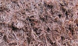 Types of Soil, Peaty Soil