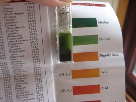 Using a soil pH test kit - reading the results