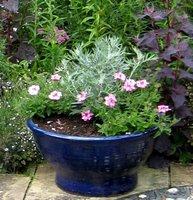 Glazed Ceramic Garden Plant Container