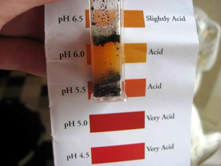 How to use a soil pH test kit. Results showing acid soil