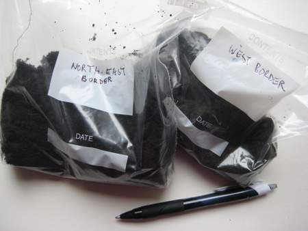 Soil samples ready for pH testing