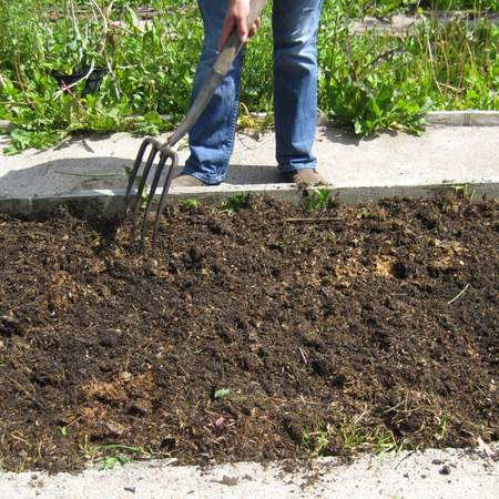 Spreading compost mulch on a no dig garden bed